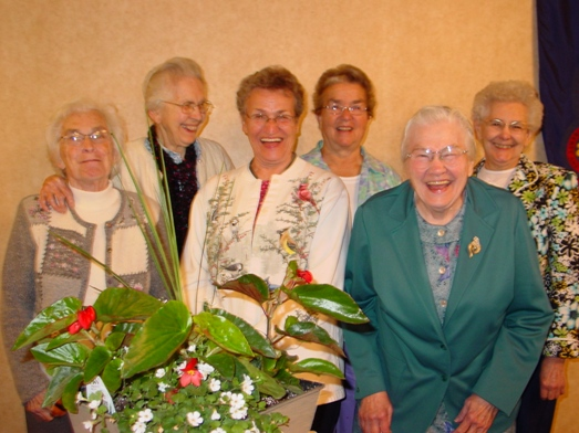 Honor 6 volunteers over 30 years service